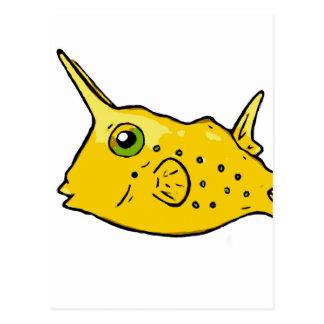 Longhorn Cowfish Postcard