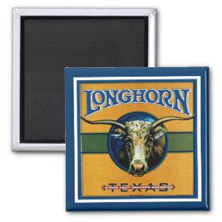Longhorn Texas Magnet
