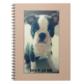 Look at me Cute dog notebook