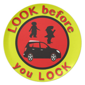 Look Before You Lock Plate