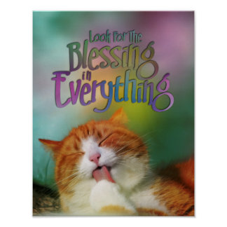 Look For Blessing Contented Cat MotivationalQuote Print