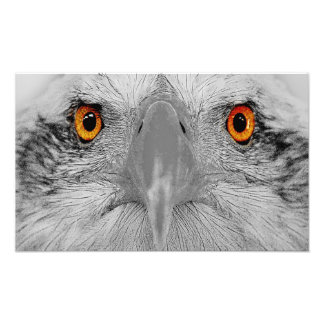 Look into  my eyes photographic print