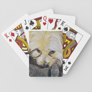 Look into my eyes playing cards