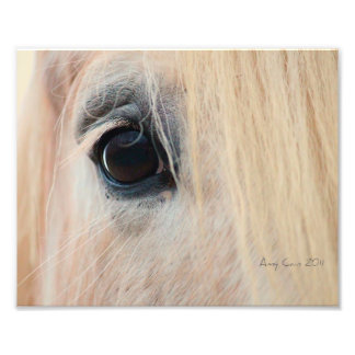 Look into the soul photographic print