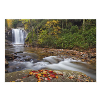 Looking Glass Falls in the Pisgah National Art Photo