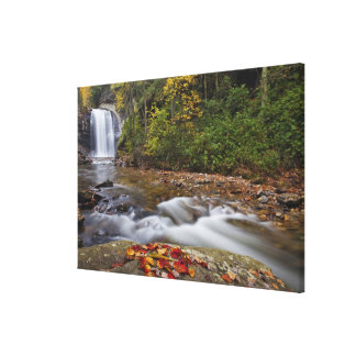 Looking Glass Falls in the Pisgah National Gallery Wrapped Canvas