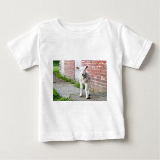 Looking lamb stands near brick wall baby T-Shirt