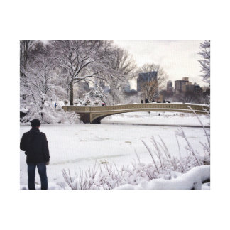 Looking Out Over A Frozen Pond Canvas Print