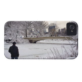 Looking Out Over A Frozen Pond iPhone 4 Case-Mate Cases