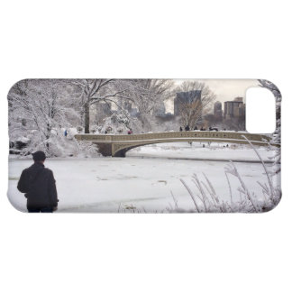 Looking Out Over A Frozen Pond iPhone 5C Case