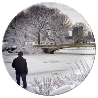 Looking Out Over A Frozen Pond Porcelain Plate
