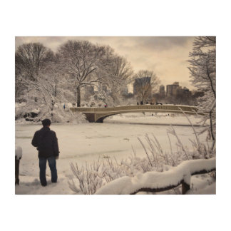 Looking Out Over A Frozen Pond Wood Wall Decor
