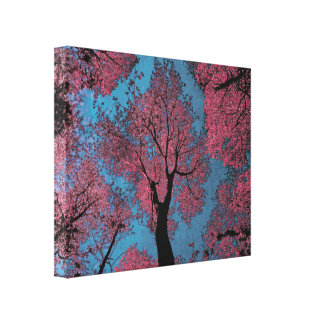 Looking Up at a Blue Sky & Pink Tree Canvas Print