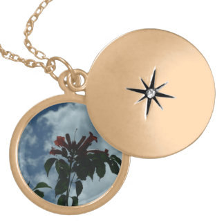 Looking Up To The Sky Locket
