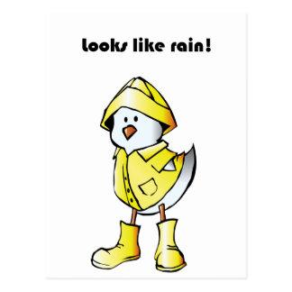 Looks Like Rain Duck Chicken Cartoon Postcard