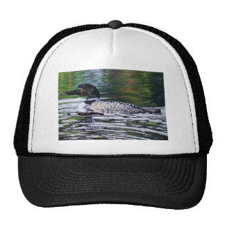 Loon by Susan Oling Hat