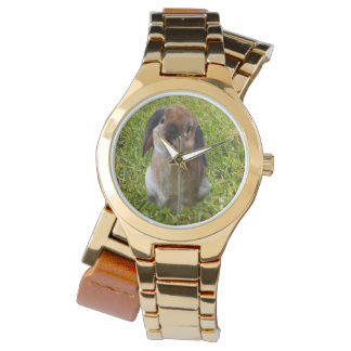 Lop Ear Bunny Rabbit, Watch