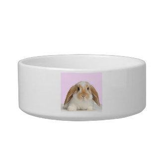 Lop Eared Bunny Rabbit Pet Bowl
