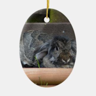Lop eared rabbit christmas ornament