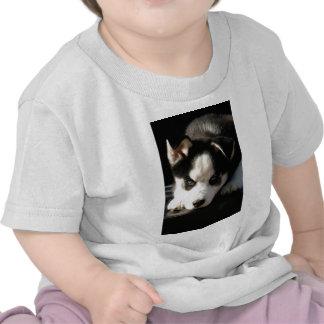 Lop Eared Siberian Husky Sled Dog Puppy 2 Tshirt