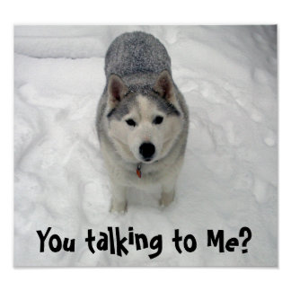Lope You talking to Me? Poster