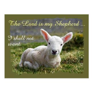 Lord is my Shepherd Little White Lamb Blank Postcard