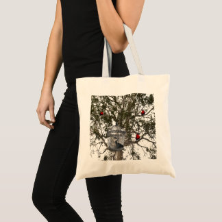 Lorikeet And Cat Role Reversal, Tote Bag