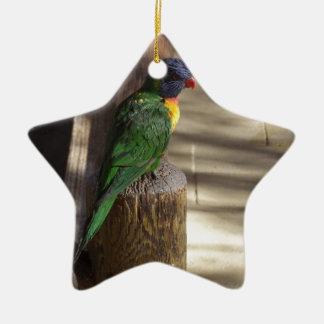 Lorikeet Ornaments