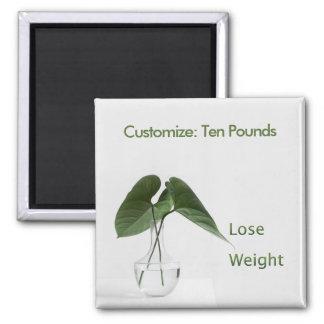 Lose Weight Diet Goals Magnet
