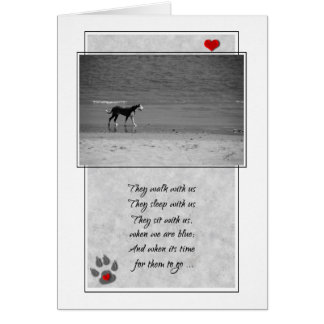 Loss of a Dog Pet Sympathy Beach Theme Card