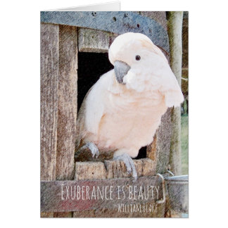 Loss of Pet Cockatoo Blake Quote Custom Sympathy Card