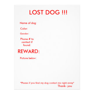 LOST DOG!!! FULL COLOR FLYER