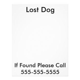 Lost Dog Poster 21.5 Cm X 28 Cm Flyer