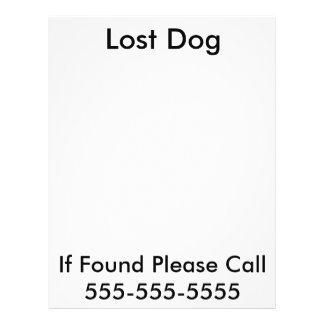 Lost Dog Poster Flyers