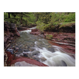 Lost Horse Creek in Waterton Lakes National Park Postcard