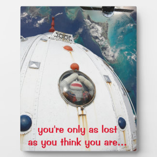Lost in Space Monkey Display Plaques