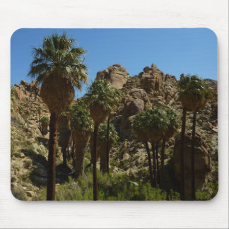 Lost Palms Oasis I at Joshua Tree National Park Mouse Pad