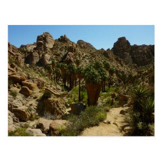 Lost Palms Oasis II at Joshua Tree National Park Postcard