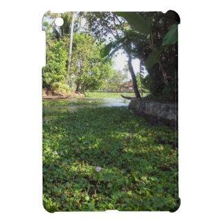 Lots of Greenery on a coastal area Case For The iPad Mini