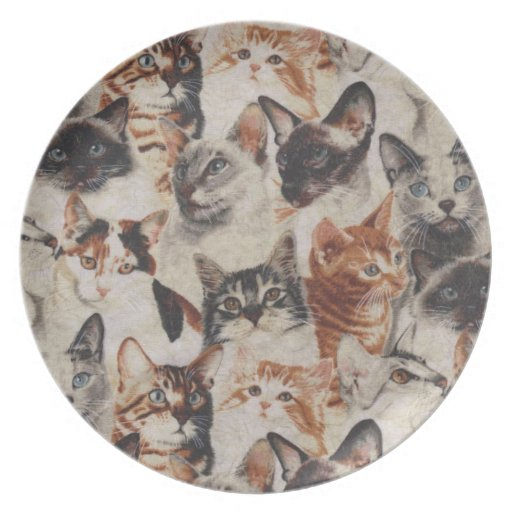 Lots of Kitties Decorative Plate