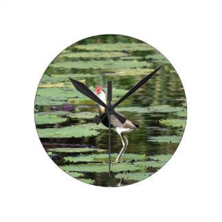 LOTUS BIRD RURAL QUEENSLAND AUSTRALIA CLOCKS