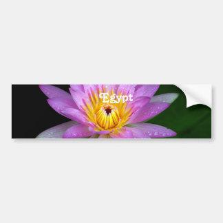 Lotus Bumper Stickers