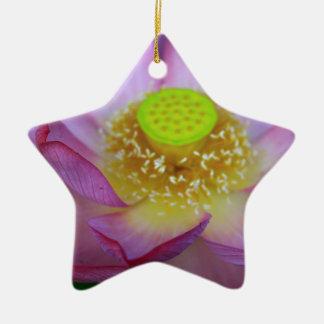 Lotus Ceramic Star Decoration