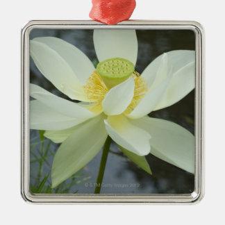 Lotus flower at edge of pond Florida Metal Ornament