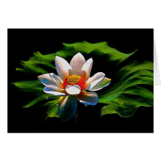 Lotus Flower design all occasions greeting card