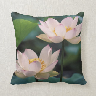 Lotus flower in blossom, China Cushion
