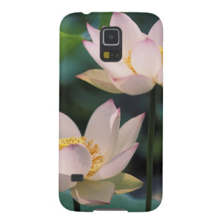 Lotus flower in blossom, China Galaxy S5 Cases