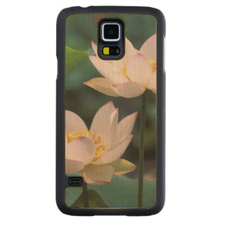 Lotus flower in blossom, China Maple Galaxy S5 Slim Case