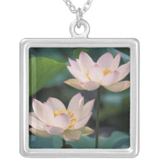 Lotus flower in blossom, China Square Pendant Necklace