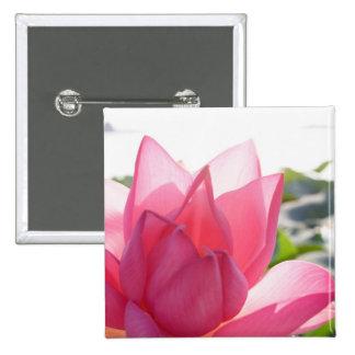 Lotus flower [Nelumbo speciosum] in full 15 Cm Square Badge
